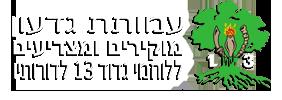 logo13-13.png